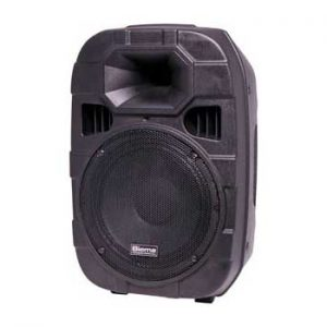 "C1002B • 250mm 10"" 2 Way 250W Powered PA Speaker"