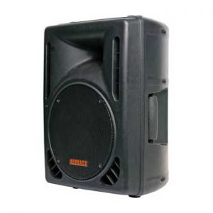 C0992 • 254mm 10 Inch 120W 2 Way Club Series PA Speaker